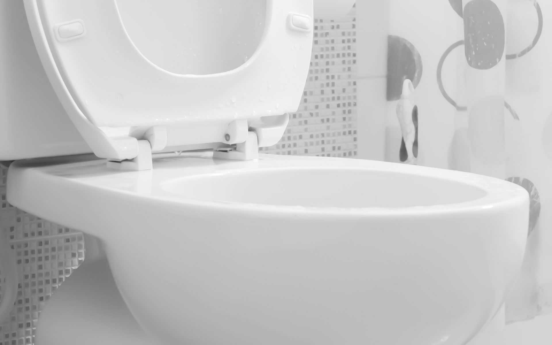Rancho Cucamonga Toilet Repair
